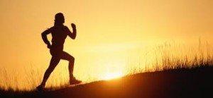 Immune system exercise